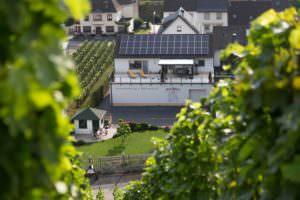 Blick aus den Weinbergen auf die Ferienwohnung